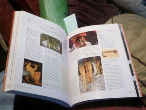 The World Encyclopedia of Musical Instruments by Max Wade-Matthews (inside)