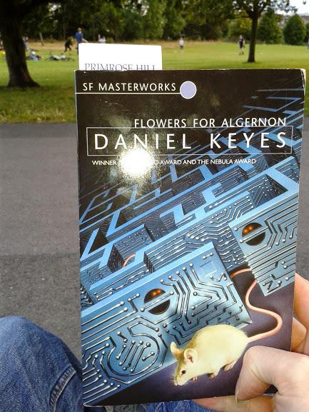 daniel keys flowers for algernon essay