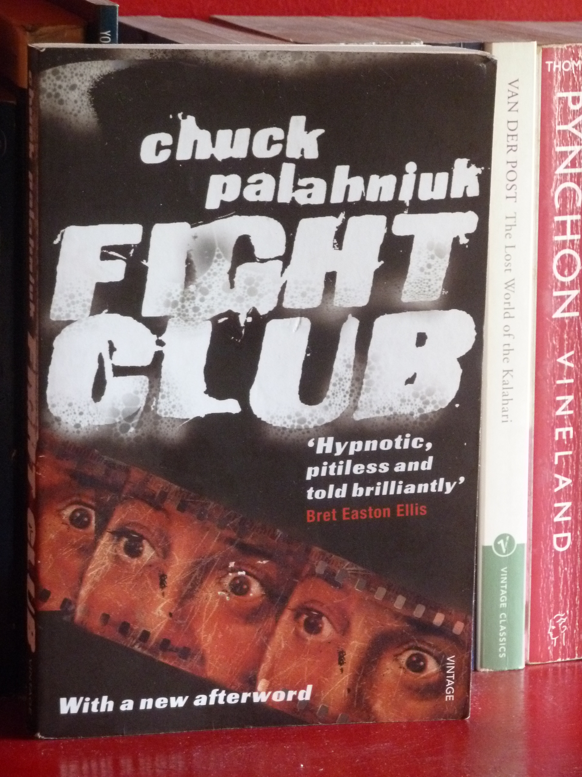 Essays on fight club novel